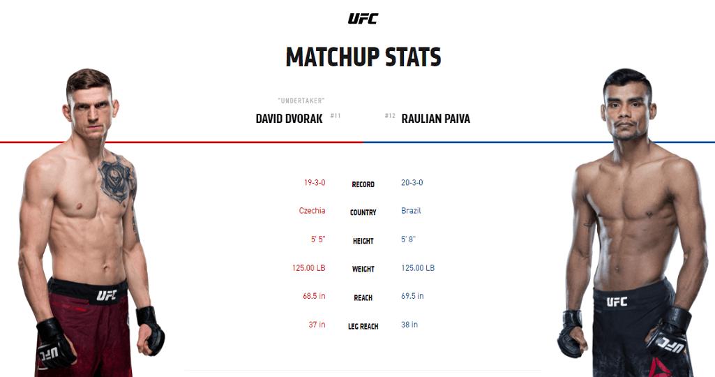 David Dvorak vs Raulian Paiva stats